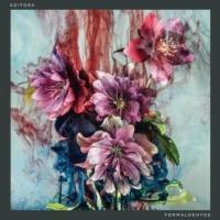 """Editors - Formaldehyde (7"""") (cover)"""