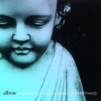 Elbow - Take Off & Landing Of Everything (LP)