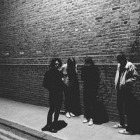 Fews - Means (LP)