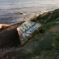 Fidlar - Almost Free (LP+Download)