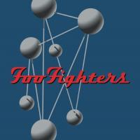 Foo Fighters - Colour And The Shape (2LP)