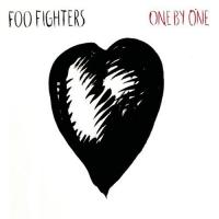 Foo Fighters - One By One (LP) (cover)