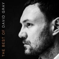 Gray, David - Best Of (2LP)