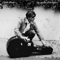 Gunn, Steve - Unseen In Between (LP)