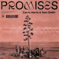 Harris, Calvin & Sam Smith - Promises (Picture Disc) (LP)