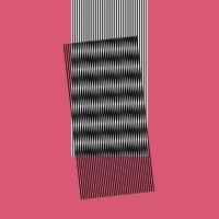 Hot Chip - Why Make Sense? (Deluxe) (2LP)