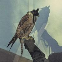 Iceage - You're Nothing (LP) (cover)