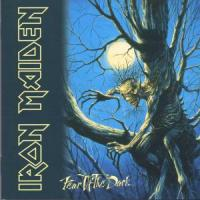 Iron Maiden - Fear Of The Dark (cover)