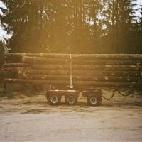 It It Anita - Agaaiin (Red Vinyl) (LP)