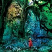 Jacco Gardner - Cabinet Of Curiosities (LP+CD) (cover)