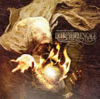 Killswitch Engage - Disarm The Descent (cover)