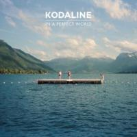 Kodaline - In A Perfect World (Deluxe) (cover)