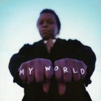 Fields, Lee - My World (LP) (cover)