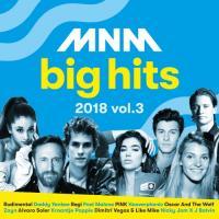 Mnm Big Hits 2018.3 (2CD)