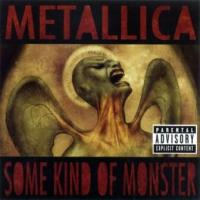 Metallica - Some Kind Of Monster (cover)