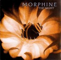 Morphine - The Night (cover)
