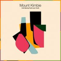 Mount Kimbie - Cold Spring Fault Less Youth (LP) (cover)