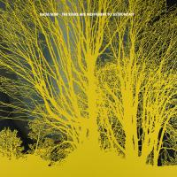 Nada Surf - Stars Are Indifferent To Astronomy (LP) (cover)