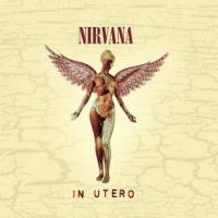Nirvana - In Utero (20th Anniversary) (3CD+DVD) (cover)