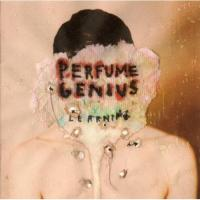 Perfume Genius - Learning (LP) (cover)