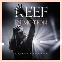 REEF - In Motion (Live From Hammersmith) (CD+BluRay)