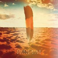 Rudd, Xavier - Spirit Bird (LP)