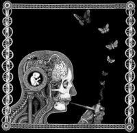 Soen - Cognitive (cover)