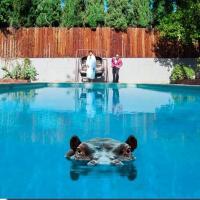 Sparks - Hippopotamus (Limited) (2LP+Download)