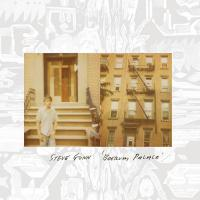 Gunn, Steve - Boerum Palace (Ltd LP) (cover)