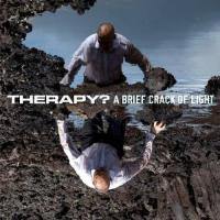 Therapy? - A Brief Crack Of Light (LP) (cover)