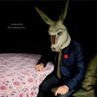 Tindersticks - Waiting Room (Limited) (CD+DVD)