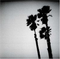 Twilight Singers - Blackberry Belle (cover)