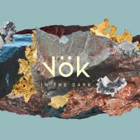 Vok - In The Dark (LP)