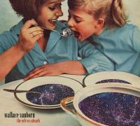 Wallace Vanborn - The Orb We Absorb (LP+CD)
