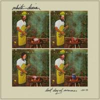 White Denim - Last Days Of Summer (cover)
