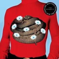 Wombats - Beautiful People Will Ruin Your Life (LP)