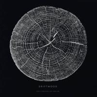 Driftwood - Only Fighters Left Behind (2LP)
