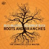 Branch, Billy & The Sons Of Blues - Roots And Branches