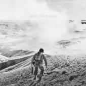 Tweedy, Jeff - Love Is The King (LP)