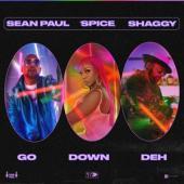 Spice Feat. Sean Paul & Shaggy - Go Down Deh 12 (12INCH SINGLE)