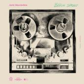 Skavhellen, Jarle - Beech Street (LP)
