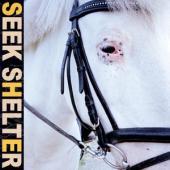 Iceage - Seek Shelter (LP)