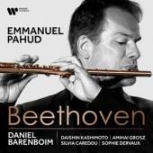 Pahud, Emmanuel - Beethoven: Chamber Music With Flute (Barenboim/Kashimoto/Grosz/Dervaux/Careddu)