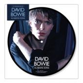 Bowie, David - Alabama Song (Picture Disc) (7INCH)