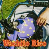 BOY PABLO - Wachito Rico (LP)(Coloured)