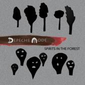 Depeche Mode - Spirits In The Forest (2CD+2BLURAY)
