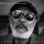 Boyd, John Blues - What My Eyes Have Seen