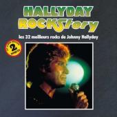 Hallyday, Johnny - Rock Story (2LP)