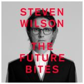 Steven Wilson - The Future Bites (cassette)