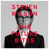 Steven Wilson - The Future Bites (cassette)